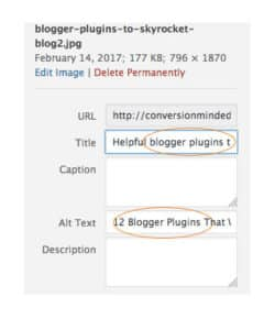 SEO for bloggers tip: add your keyword to the alt text of your image.