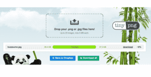 SEO for Bloggers tip: Use TinyPNG to compress your files sizes and increase your site speed.